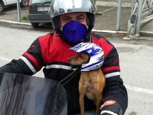 hotel_cobalto_biker